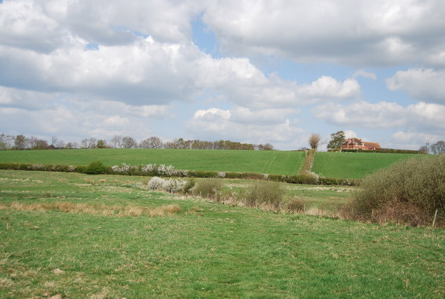 View in the Brede Valley