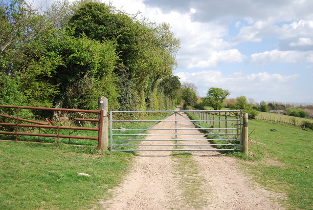 Gate, 1066 Country Walk