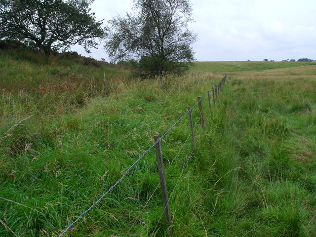 Fence by Fence Burn north-west of Morpeth