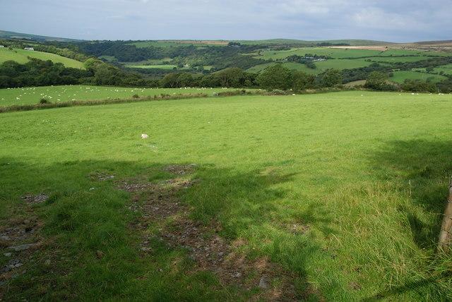 Grazing land near Gellifawr