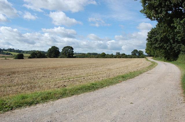 Track to Bodiam Castle