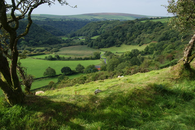 Hillside overlooking the Gwaun Valley