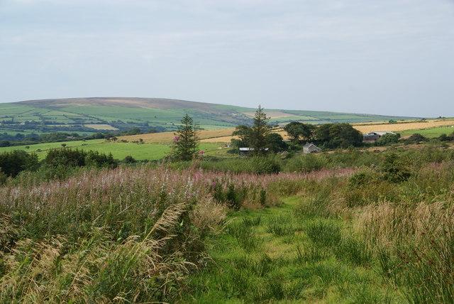 Hillside above Cwm Bâch
