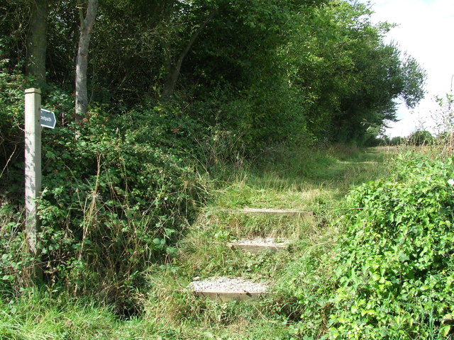 Footpath And Steps