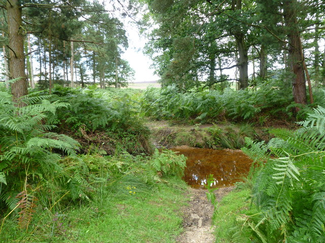Alderhill Inclosure, ford