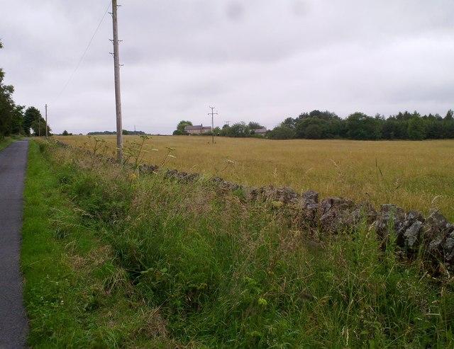 Looking towards Shotleyfield