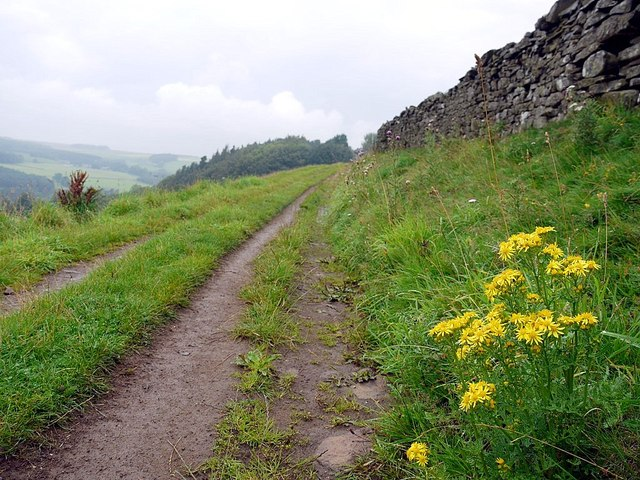 Track south of Backstone Bank