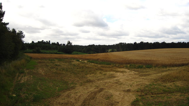 Fields and woodland, Chillesford