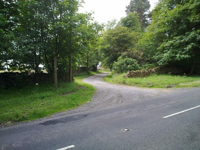 Lane to Field Head