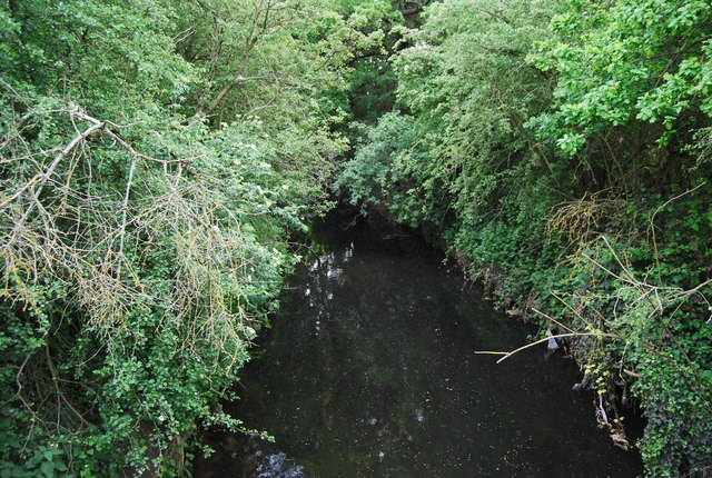 Beverley Brook - upstream