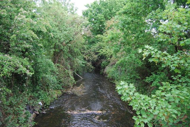 Beverley Brook - downstream