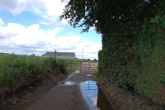 The Barn in a Field