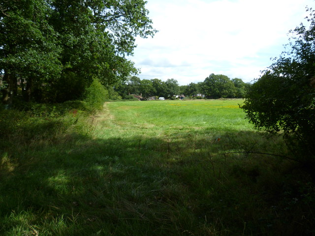Field south of Cranleigh
