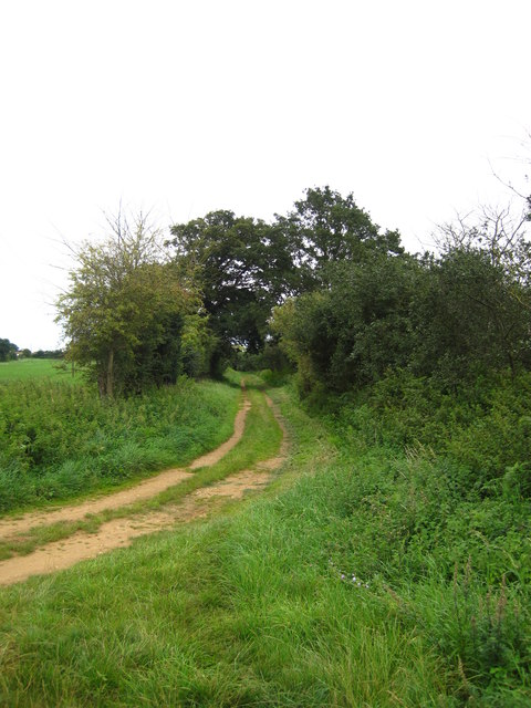 Track in Butley