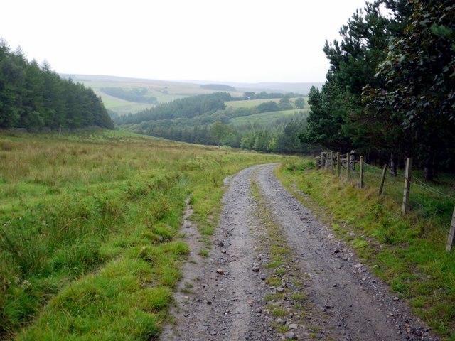 Track beside Quarry Wood