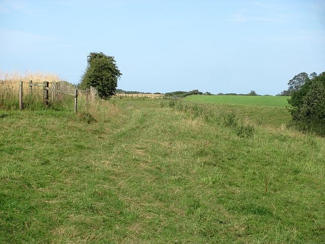 Grassland, Little Mill