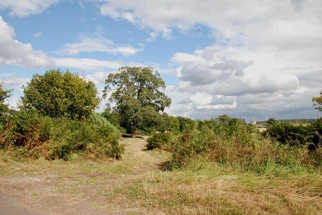 Field Entrance near the Sheepwalks