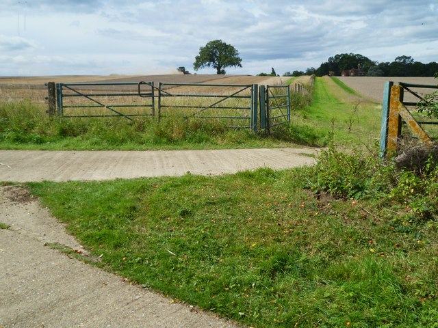 Bridleway junction near Holdhurst Farm