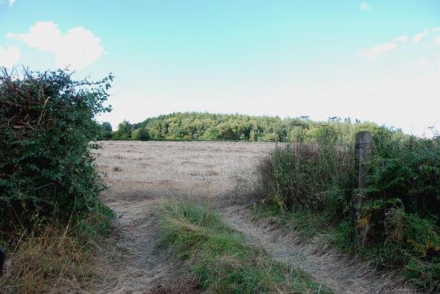 Looking across to Birchwood