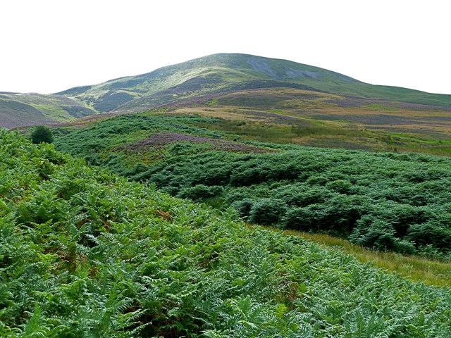 Carnethy Hill (573 m) from Logan Burn