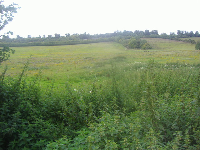 View from North Downs Way, Compton