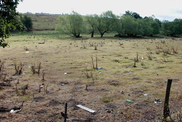 Pasture off Hyde Lane Kinver
