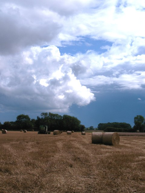 Stubble field, Pickhill