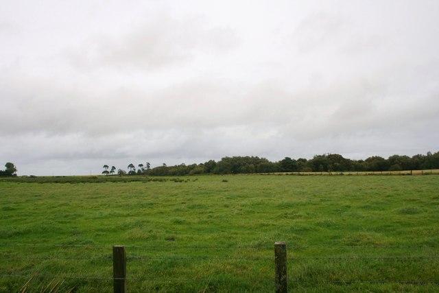 Tillyfour Croftland