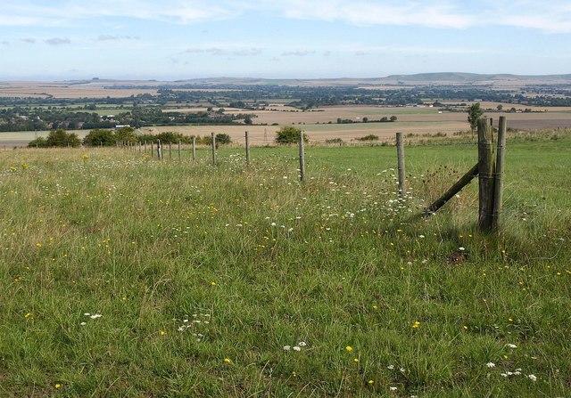 Downland, Urchfont Hill