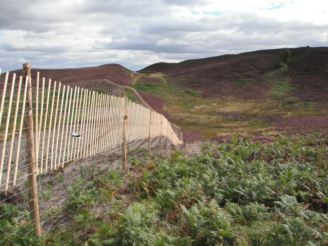 Deer Fence with path across Boggy Seat