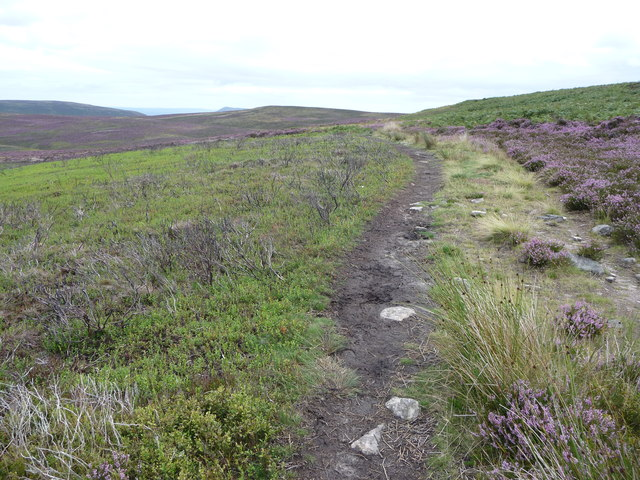 View south-east along a footpath below Bal-Mawr