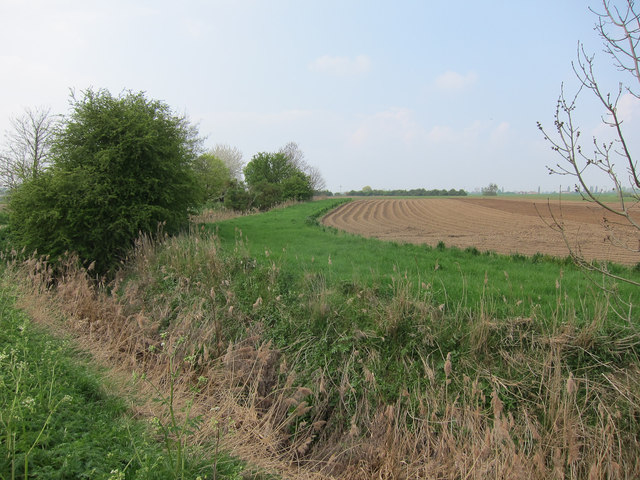 Furrowed field by Coldham Bank