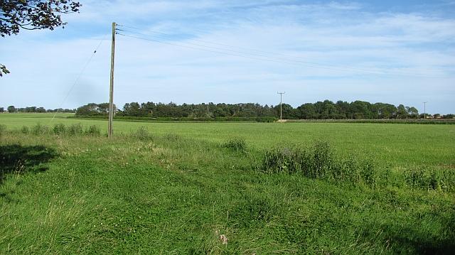 Farmland, Newtonbarns