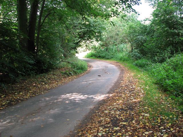 Approaching Bradmoor Hill, Narford