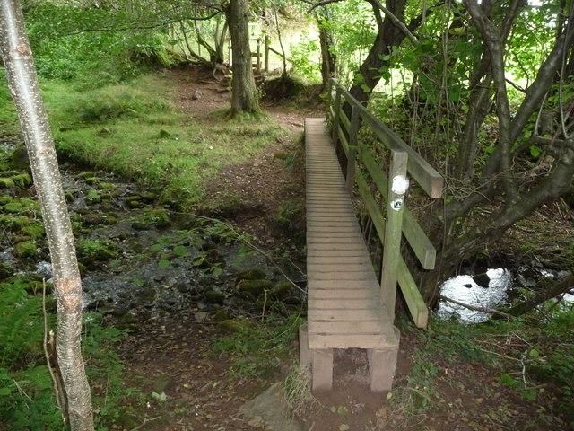 Wooden footbridge in Cwm Bwchel