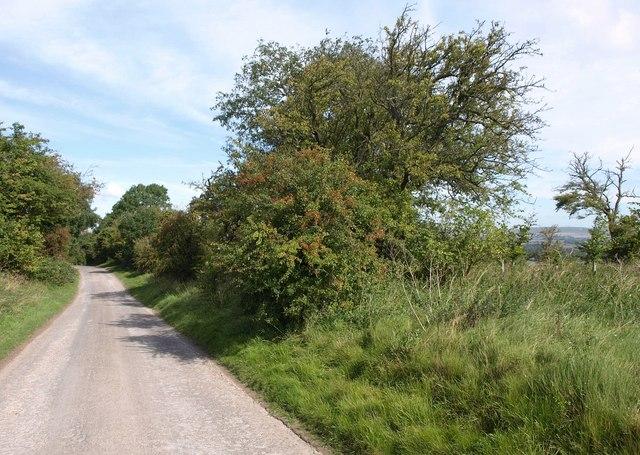 Lane down Redhorn Hill