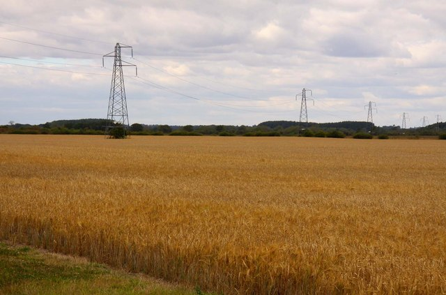 Wires across the wheatfield