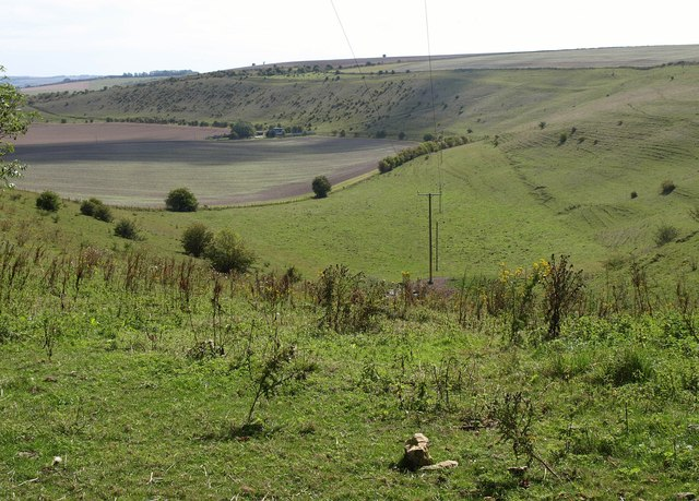 Chirton Bottom
