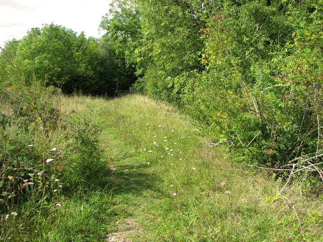 Path along disused railway embankment, Narborough