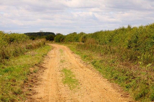 Bridleway to Landmead Farm
