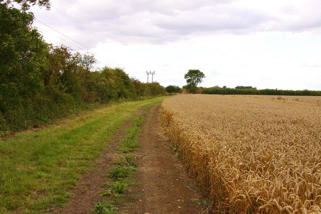Bridleway to Ardington