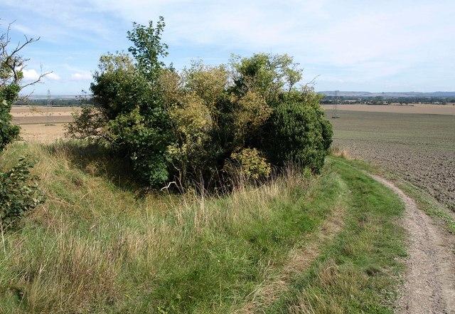 Bridleway to Conock