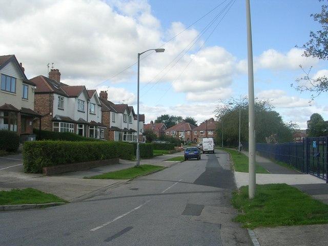 Millfield Avenue - Millfield Lane