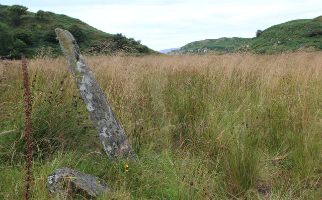 Stone by the road to Crinan Ferry