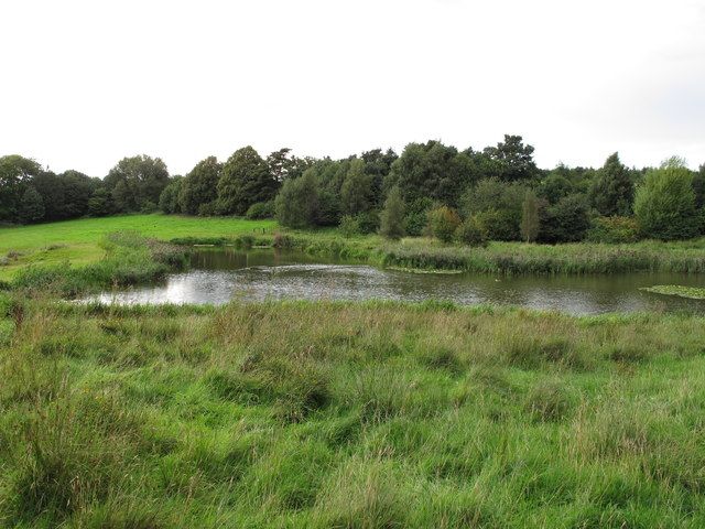 Pond near Scotland Street