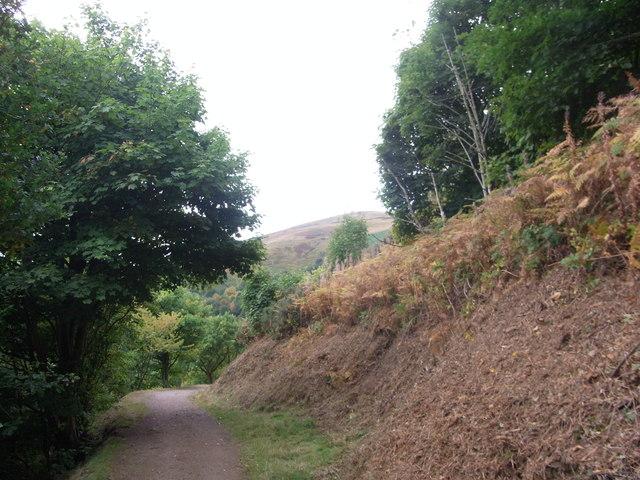 Path round North Hill