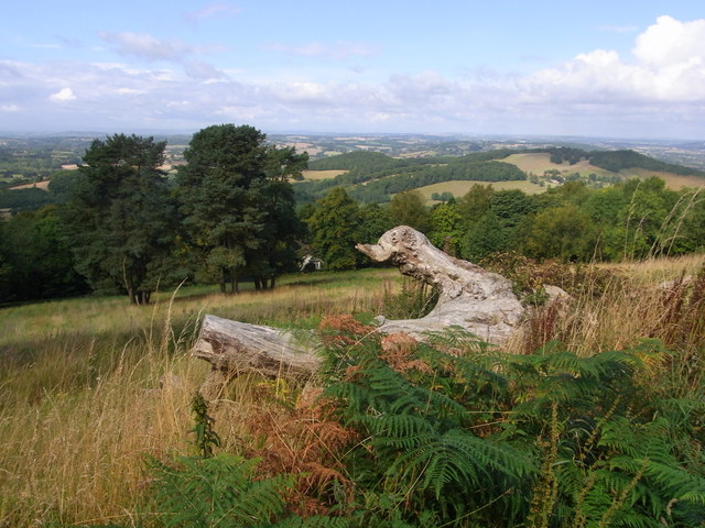 View from contour path below Worcestershire Beacon