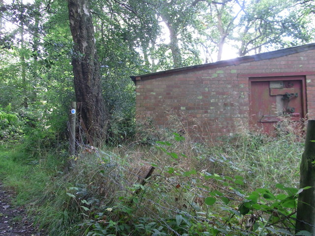 Bridleway below Hayslad (Spout)