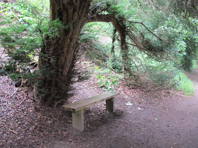 Seat by the riverside path at Allen Banks