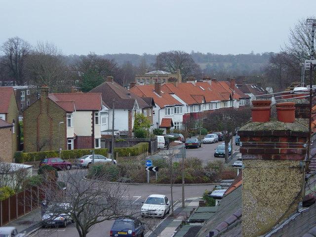 Cross Deep Gardens - A rooftop view